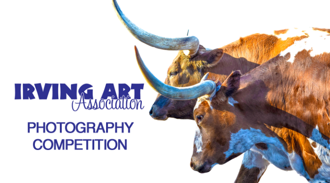 Enter the 2017 IAA Photography Competition