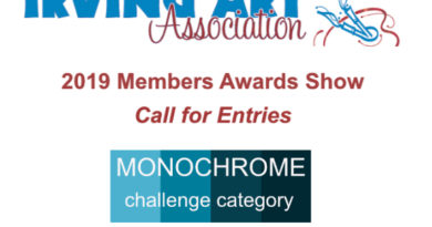 2019 64th Annual IAA Members Awards Show call for entries