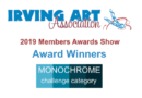Award Winners from the 2019 IAA Members Awards Show