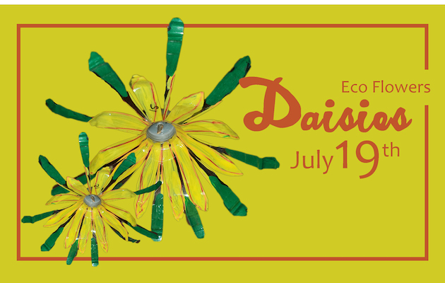 Eco Flowers: Daisies free class July 19